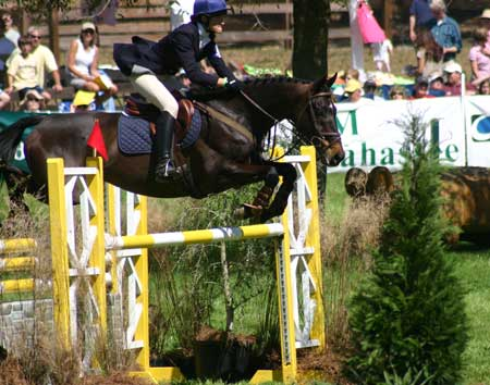 Showjumping_positionWEB
