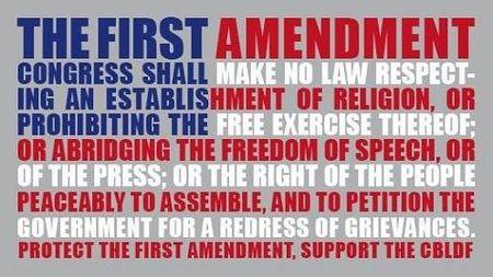 First-amendmen-memet
