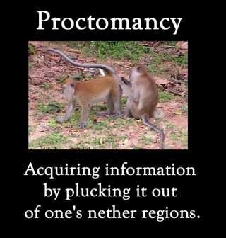 Proctomancy-monkeys-aquiring-information