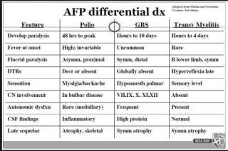 AFP differential diagnosis